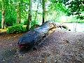 Snake-Bench - panoramio.jpg