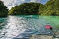 Snorkeling in the Casa Cenote in Mexico (29725069898).jpg