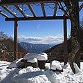 Snow - panoramio (30).jpg