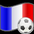 Soccer France.png