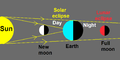Solar lunar eclipse diagram.png