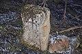 Spomenik-kulture-SK258-Manastir-Rodjenja-Presvete-Bogorodice-Bela-crkva 20160204 0007.jpg