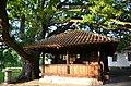 Spomenik-kulture-SK356-Kapela-brvnara-Sepci 20160609 8034.jpg