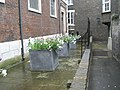Spring flowers in St Andrew's Churchyard - geograph.org.uk - 1258956.jpg