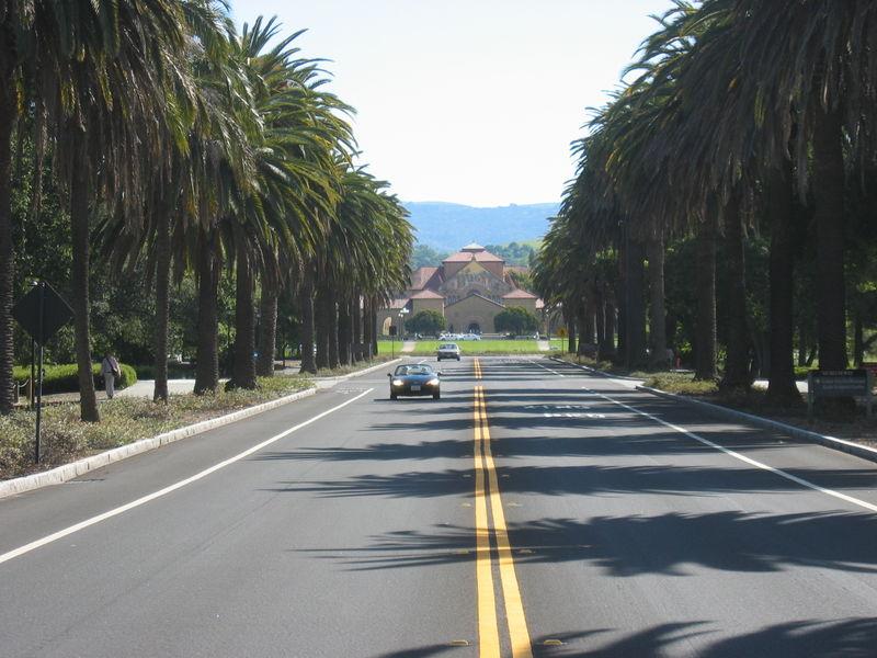 File:Stanford University Palm Drive facing Memorial Church.JPG