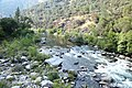 Stanislaus River at Big Dog Rapid.jpg