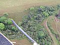 Starr-141014-2216-Caesalpinia decapetala-aerial view-Kakipi Gulch Haiku-Maui (24616612974).jpg