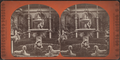 Statues in a Conservatory, Fifth Avenue, New York, from Robert N. Dennis collection of stereoscopic views.png