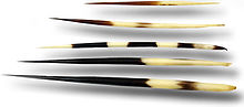 5 grandes épines de taille et rayures différentes