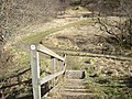 Steps down to the riverside path - geograph.org.uk - 1200361.jpg