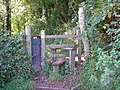 Stile and dog-gate, Laugharne - geograph.org.uk - 596468.jpg