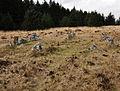 Stone circle on Lakehead Hill.jpg