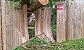 Storm Damage - Broken Fence (17464953456).jpg