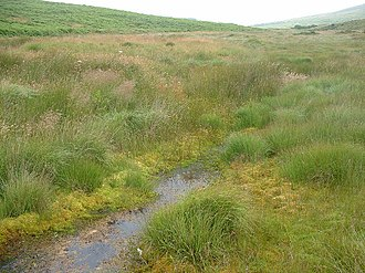 Bodmin Moor - The De Lank River at Garrow Tor