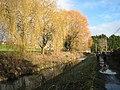 Stroudwater Canal above Dudbridge Lock - geograph.org.uk - 1052886.jpg