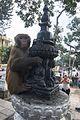 Swayabhunath Temple-IMG 3250.jpg