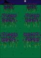 Symmetrical-fields.png