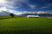 Agriculture in Taiwan - Wikipedia