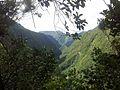 Takamaka dans la montée - panoramio.jpg