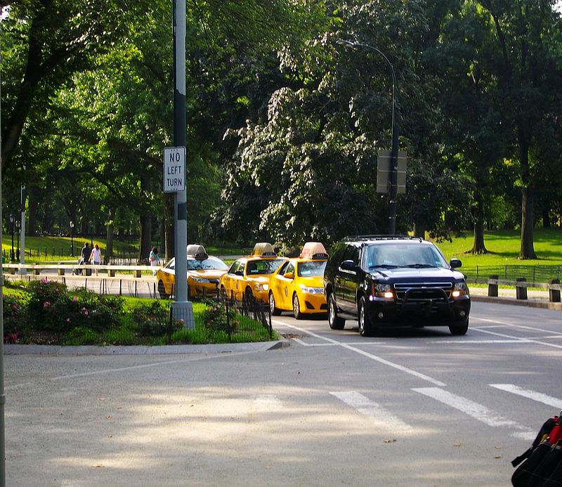 Taxis routes Central Park.JPG