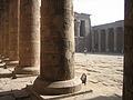 Temple of Edfu (2428092771).jpg