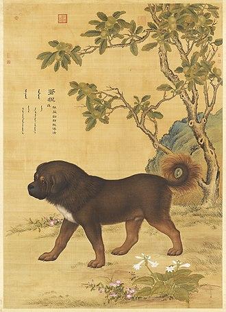 Tibetan Mastiff - Ten Prized Dogs series, Tibetan Mastiff. Artwork depicting a Tibetan Mastiff from the Qing Dynasty.