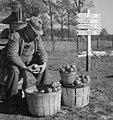 Tennessee-farmer-crossroads-1941-tn1.jpg