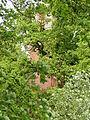 Tessin (Wittendörp) Herrenhaus Park Katzenturm 2012-05-18 014.JPG