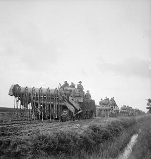 Westminster Dragoons - Sherman Crab flail tanks of the Westminster Dragoons carrying infantry of the 2nd Battalion, Argyll and Sutherland Highlanders during the advance east of Beringe, 22 November 1944.