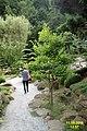 The Japanese garden, Jarków (32099652626).jpg
