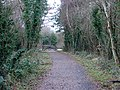 The Mawddach Trail at Morfa Mawddach - geograph.org.uk - 1092426.jpg