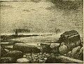 The Pine-tree coast (1891) (14777150744).jpg