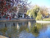 The Pond, Feltham - geograph.org.uk - 605347.jpg