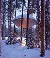 The UFO, Treehotel in Harads, Sweden - Jan 3, 2019.jpg