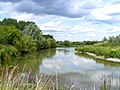 The bird reserve adjacent to Tring Sewage Works - the lagoon - geograph.org.uk - 1408794.jpg