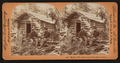 The first white man's log cabin, Haines, Alaska, by Singley, B. L. (Benjamin Lloyd).png