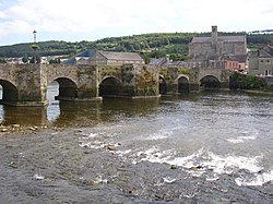 The Old Bridge with a view of Carrickbeg