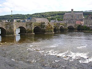 Carrickbeg - The Old Bridge with a view of Carrickbeg