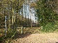 The south end of the bridleway through Badlesmere Park Wood - geograph.org.uk - 1051250.jpg