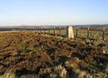 The trig point on Barrel Law - geograph.org.uk - 295190.jpg