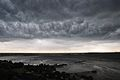 Thunderstorm Over Nalban - Kolkata 2011-05-04 2739.JPG