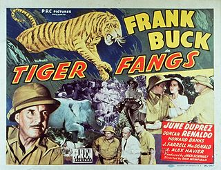 <i>Tiger Fangs</i> 1943 film by Sam Newfield