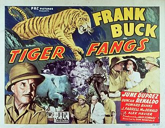 Arthur St. Claire - Lobby card for Tiger Fangs