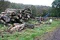 Timber operations by the milestone near Dell. - geograph.org.uk - 258105.jpg