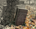 Tombstone Ernst Steinitz Wroclaw.png