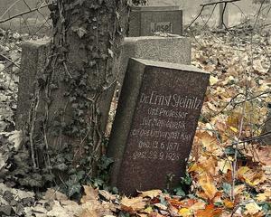 Ernst Steinitz - Image: Tombstone Ernst Steinitz Wroclaw