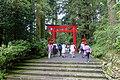 Torii - Hakone-jinja - Hakone, Japan - DSC05892.jpg