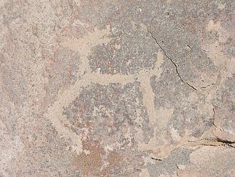 Toro Muerto - Petroglyph of a llama