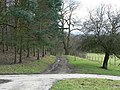 Track to Lady Bridge, by Harewood Park - geograph.org.uk - 351772.jpg
