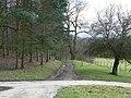 Track to Lady Bridge, by Harewood Park - geograph.org.uk - 351772.jpg